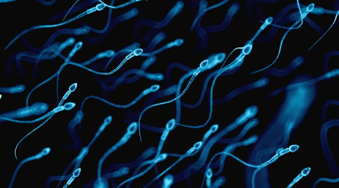 Six Things You Didn't Know About Sperm!