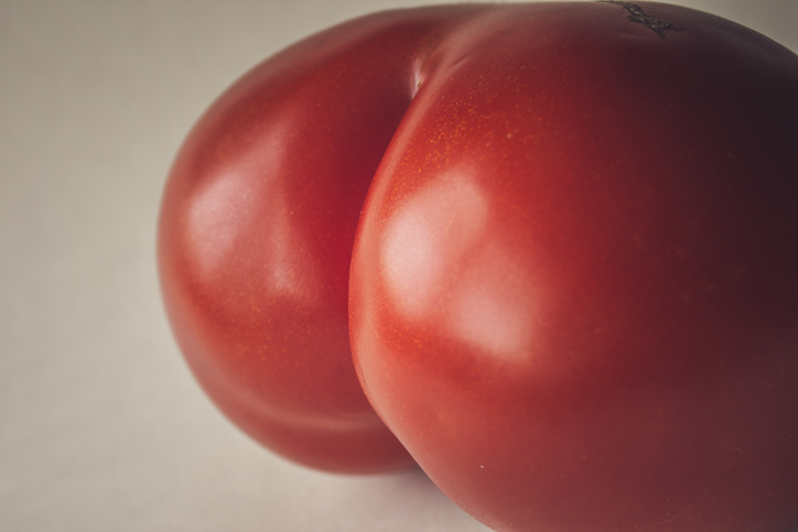 Tomato, nothing else