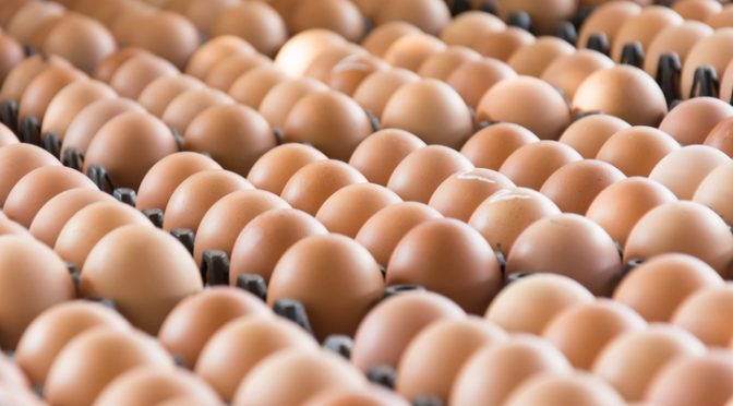 Man Sticks 15 Eggs up His Bum For Sexual Thrill